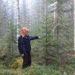 Jatkuva kasvatus - metsä hakkuun jälkeen - kuva © Ismo Tuormaa