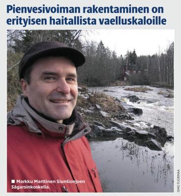 Markku Marttinen Siuntionjoen Sågarsinkoskella - kuva © Ismo Tuormaa
