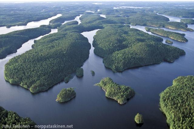 Koloveden kansallispuistoa – kuva: Juha Taskinen